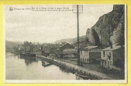 * Dinant (Namur - Namen - La Wallonie) * (Nels) Dinant En 1919, Quai De Meuse Pendant Guerre, Bateau, Péniche, Delhaize - Dinant