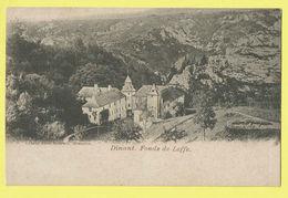 * Dinant (Namur - Namen - La Wallonie) * (Editeur Jules Nahrath) Fonds De Leffe, Panorama, Vue Générale, TOP - Dinant
