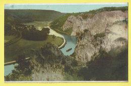 * Dinant (Namur - Namen - La Wallonie) * (Ed Nels) Le Rochers De Freyr, Couleur, Panorama, Canal, Bateau, Rare - Dinant