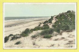 * Wenduine - Wenduyne (Kust - Littoral) * (Artcolor, Nr 5) Mer Et Dunes, Duinen En Zee, Sea, Plage, Beach, Strand - Wenduine