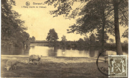 BIERWART  L' étang  ( Jardin Du Château ). - Fernelmont