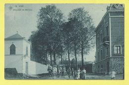 * Visé - Wezet (Liège - La Wallonie) * (SBP, Nr 15) Chaussée De Berneau, Belle Animation, Animée, Cheval, TOP, Unique - Visé