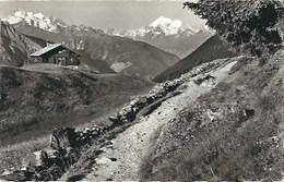 CPA Suisse Valais  * Am Weg Riederalp - Bettmeralp * - VS Valais