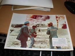 Gnezdo Salamandre Stuart Whitman, RAY MILLAND, Woody Strode.. - Cinema Advertisement
