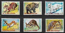 GUINEE  EQUATORIALE      -    Animaux  /  Mamifères   /  Ours  /  Kangourou .... -       Oblitérés  . - Guinée Equatoriale