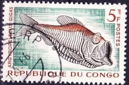Kongo-Brazzaville - Riesen-Tiefsee-Beilfisch (Argyropelecus Gigas) (Mi.Nr.: 17) 1961 - Gest Used Obl - Congo - Brazzaville