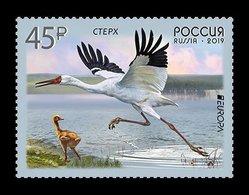 Russia,  2019 Europa Europe, Birds , 1 Stamp - Europa-CEPT