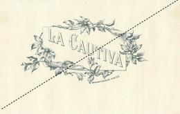 1893-1894 Grande étiquette Boite à Cigare Havane LA CAUTIVA - Etiquettes