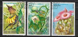 GUINEE  EQUATORIALE      -   FLEURS   /   Orchidées  -       Oblitérés  . - Guinée Equatoriale