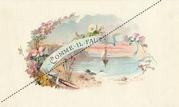 1893-1894 Grande étiquette Boite à Cigare Havane MARION COMME IL FAUT - Etichette