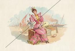 1893-1894 Grande étiquette Boite à Cigare Havane PSCHUTT - Etiquettes