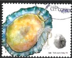 Portugal 2007 Fauna Marinha Madeira Portugal Faune Marine Patelle Marine Fauna Limpet - 1910-... Republic