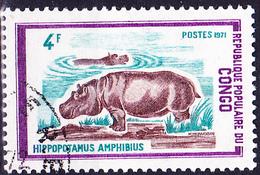 Kongo-Brazzaville - Flusspferd (Hippopotamus Amphibius) (Mi.Nr.: 344) 1972 - Gest Used Obl - Congo - Brazzaville