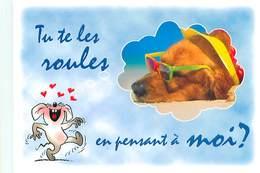 Humour Souris Chien      B 801 - Humour