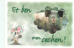 Humour Souris Cochon   B 818 - Humour