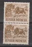 Indonesia Indonesie 173 Pair Used ; Koe, Cow , La Vache, Vaca, BANTENG 1956 NOW MANY STAMPS OF ANIMALS - Koeien
