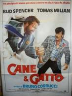 CANI E GATTO - Affiches & Posters