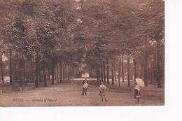 """Mons Avenue D'havré'  """"waux Hall"""" - Mons"""