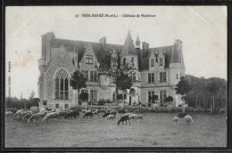 CPA 49 - Vieil-Baugé, Château De Montiver - France
