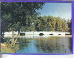 Carte Postale 36. Belabre  Le Vieux Pont   Très Beau Plan - France