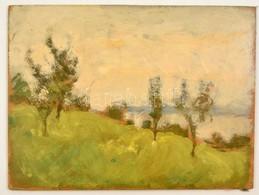 Somlai Vilma (1938-2007): Tájkép, Olaj, Farost, Jelzés Nélkül, 27×36 Cm - Ohne Zuordnung