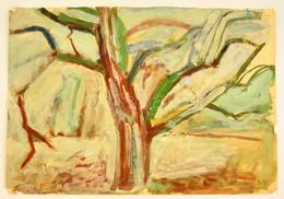 Somlai Vilma (1938-2007): Öreg Fa, Akvarell, Papír, Jelzett, 43×61 Cm - Ohne Zuordnung
