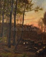 Jelzés Nélkül: Favágók. Olaj, Vászon, Keretben, 56×45 Cm - Other Collections
