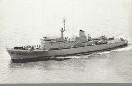Force Navale Belge - A 960 Godetia - Photo - 2 Scans - Guerre