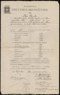 1910 Dr. Elek Oszkár (1880-1945) Irodalomtörténész Aláírása Egy Egri Reáliskolai érettségi Bizonyítványon, 1 K. Okmánybé - Other Collections