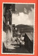 TRM-02 Saint-Luc  Paysan Et Son Mulet, Maultier. ANIME. Circulé, Date Illisible. Visa ACF 1939 - VS Valais