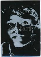 Női Portré, Modern Ezüstözött Fotó, 17,5x12,5 Cm - Autres Collections