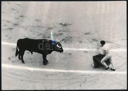 Cca 1975 Fotósorozat Egy Bikaviadalról, 8 Db Vintage Fotó, 16,5x23 Cm - Autres Collections