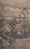 Postkaart - Carte Postale ONZE LIEVE VROUW WAVER Etablissement Des Ursulines - Jardin D'hiver 1914 (L55) - Sint-Katelijne-Waver