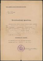 1943 Kivételezettségi Igazolvány Kitüntetett Zsidó Származású Katonának, + 1940 Tanúsítvány Nem Zsidó Származásról - Other Collections