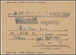 1943 Munkaszolgálatos Eltávozási Engedélye - Other Collections