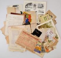 Zacskónyi Vegyes Papírrégiség Különböző Időszakokból (okmányok, Nyomtatványok, Reklámok) - Non Classés