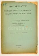 Gelóczy Zsigmond: Visszapillantás Az Országos Közegészségügyi Egyesület Huszonötesztendős Multjára. Bp., 1912. 36p. - Non Classés