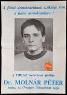 'FIDESZ Terézvárosi Jelöltje' - Választási Plakát, Hajtott, 58,5×41,5 Cm - Other Collections