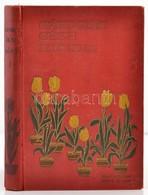 Gárdonyi Géza: Az én Falum. I. Kötet. Egy Tanító Följegyzései. Bp.,1908, Singer és Wolfner. Negyedik Kiadás. Kiadói Fest - Books, Magazines, Comics