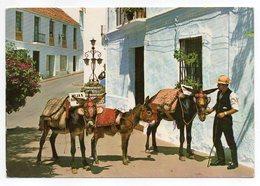 Espagne--près Malaga-MIJAS--Coin Typique Et Taxi-ânes (animée,âne)-cachet-timbrée Pour Allemagne Est - Spain