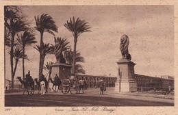 CAIRO,EGYPT OLD POSTCARD (C585) - Kairo