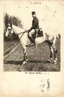 T4 1917 IV. Károly Király / Charles I Of Austria (apró Lyukak / Small Pinholes) - Ansichtskarten