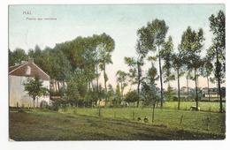 Halle Prairie Aux Environs Oude Postkaart Hal - Halle