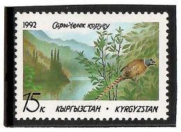 Kyrgyzstan.1992 Park (Bird: Pheasant). 1v: 15 K  Michel # 1 - Kyrgyzstan