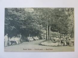 Rare! Băile Bizușa/Sălaj-Transylvania,Romanian Used Postcard From 1929 - Rumänien