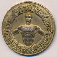 Pincés Puder István (1907-) 1933. 'Pesti Napló - Az Est - Magyarország / Regatta I.' Aranyozott Br Díjérem (40,5mm) T:2 - Coins & Banknotes