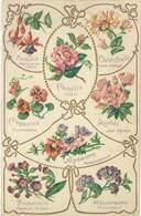 Cpa Fantaisie : Fleurs, Langages ( Gaufrée ), Camélia, Anémone, Primevère, Capucine ... - Fantaisies