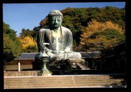 C448 JAPAN - KAMAKURA - BUDDHA - Giappone