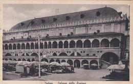 CARTOLINA - POSTCARD - PADOVA - PALAZZO DELLA RAGIONE - Padova