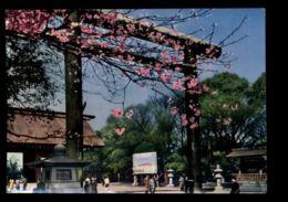 C455 JAPAN - TOKYO - YASUKUNI SHRINE DURING CHERRY BLOSSOM 1961 - Tokyo